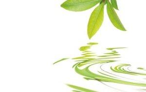 Problemas de Salud: Solucionalos de Forma Natural