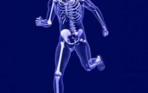 El Cuerpo, el Espejo de nuestra Salud