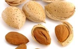 Almendras: Alimentos para Mantener la salud