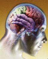 Apuntes sobre el Alzheimer: tratamientos y remedios naturales