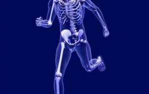 Remedios naturales para los huesos, para que estén sanos y fuertes