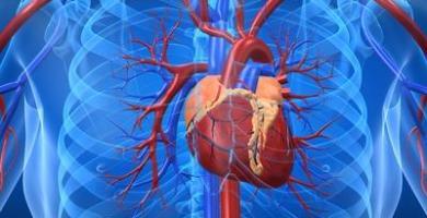 Enfermedades coronarias