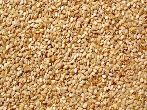 I semi di sesamo preziosi alleati della nostra salute