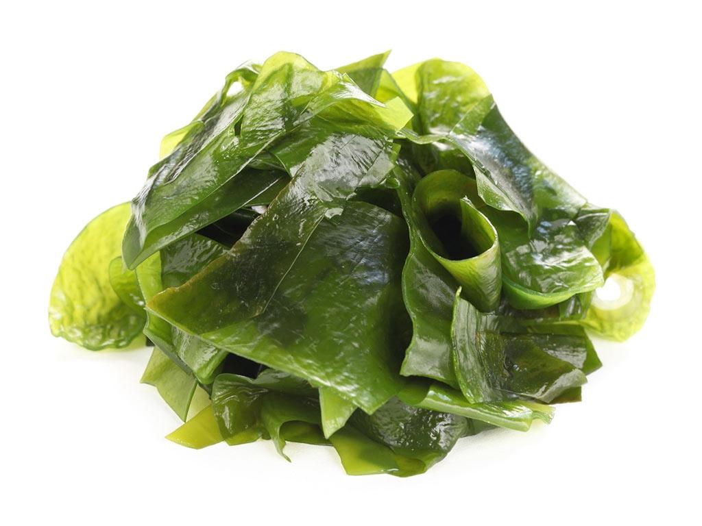 Alga Kombu 5 propriet benefici e valori nutrizionali