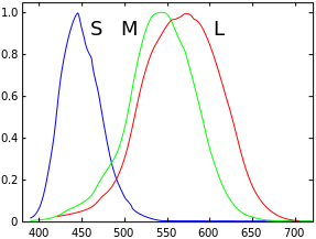 A graph representing the spectral sensitivity of the different types of cone cells in the human eye at different wavelengths.