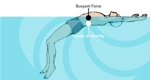 A diagram showing how it is possible to remain afloat in water, by using the buoyancy force to support a swimmer's centre of gravity.