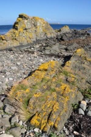 A photograph showing the Kildonan Dykes, Isle of Arran, Scotland.