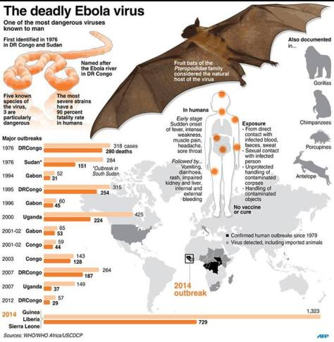 An infographic about the Ebola Outbreak and the History of the virus. Source: WHO
