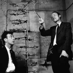 A black and white photograph showing Watson and Crick posing next to the 3D helical DNA model.