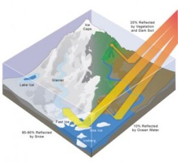 A diagram explaining how the albedo effect works - 20% of solar rays are reflected by vegetation and dark soil, 10% are reflected by ocean water, and 85-90% are reflected by snow and ice.