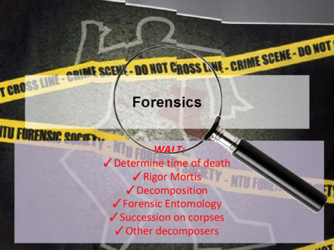 "A photomontage showing a body outline, ""Do Not Cross"" yellow police tape, and a magnifier focused on the word ""Forensics"". The picture also lists the following forensic ways to estimate the time of death - Wait: Determine the time of death; Rigor mortis; Decomposition; Forensic Entomology; Succession on corpses; Other decomposers."