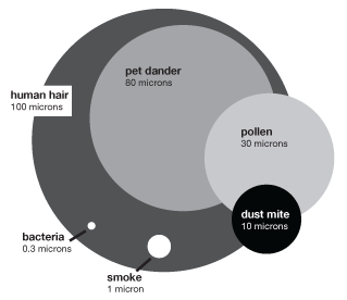 A diagram comparing the size of different macro-particles and explaining how big a micron is. A human hair is 100 microns. A pet dander is 80 microns. Pollen is 30 microns. Dust mite is 10 microns. Smoke is 1 micron. And bacteria are about 0.3 microns.