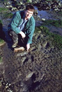 A photograph showing palaeontologist Neil Clark and the dinosaur tracks found on Skye.