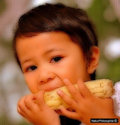 A photograph showing a young Asian boy eating a corn cob. Artwork: Naturphilosophie