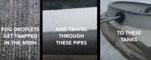 "A photo-montage explaining the technology behind fog catching. The captions read: ""Fog droplets get trapped in the mesh, and travel through these pipes to these tanks""."