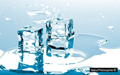 Melting ice cubes in a small pool of water.