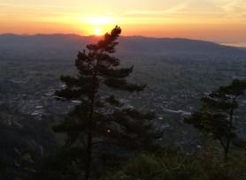 Flächenfrass mit Sonnenuntergang im Rheintal