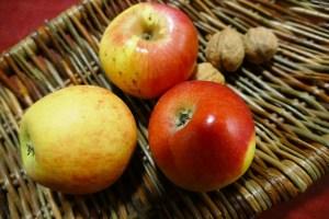 Apfel auf Weide