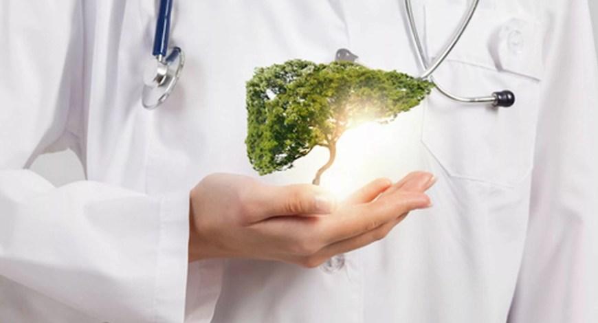 La salute del fegato parte da una giusta depurazione