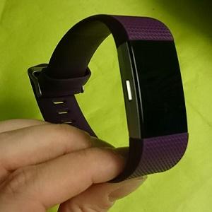 Fitbit Charge 2 Natuurlijk Linda