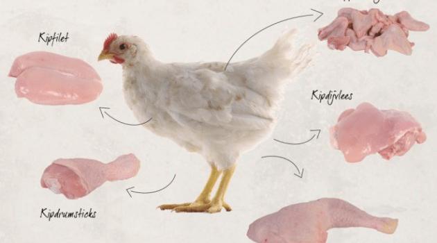 Natuurlijk Linda kip