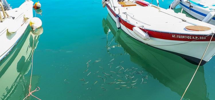 Rethymnon haven Natuurlijk Linda