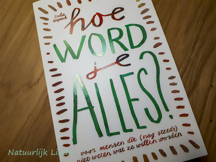 review emilie wapnick hoe word je alles