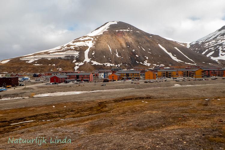 spitsbergen longyearbyen natuurlijk Linda