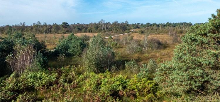 Inspiratie voor een week omgeving Leudal/Groote Peel, mijn reisverslag