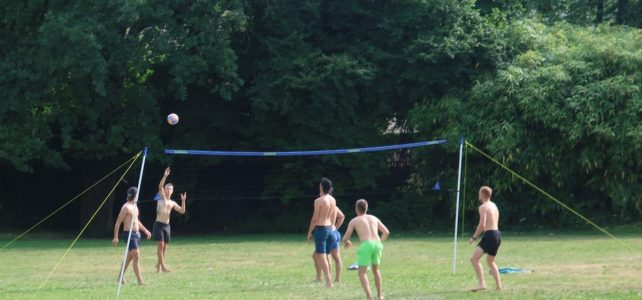 Volley-sur-herbe
