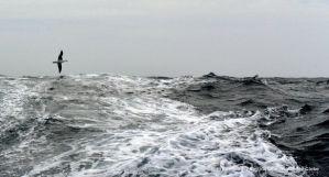 Vendée Globe : Le Cléac'h restores lead