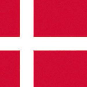 Bandiera Danimarca 20 X 30 Cm 35 431 01 Osculati