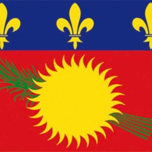 Bandiera Guadalupe 20x30 35 473 01 Osculati