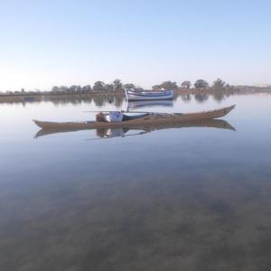 nautilus kayaks caseria 4