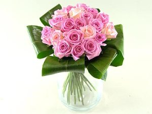 grace-pink-roses-1