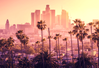 Recruitment Los Angeles   Marketing, Sales and Executive   Naviga