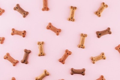 """How """"Old Dogs"""" Become Better Change Leaders"""