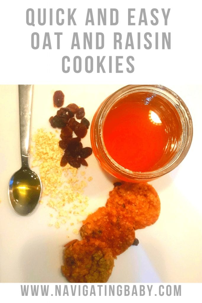 Quick and Easy Oat and Raisin Cookies