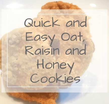 Quick and easy oat cookies