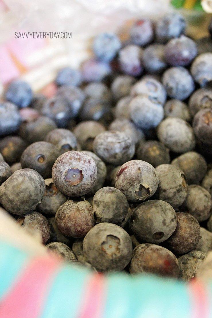 blueberrybasket1