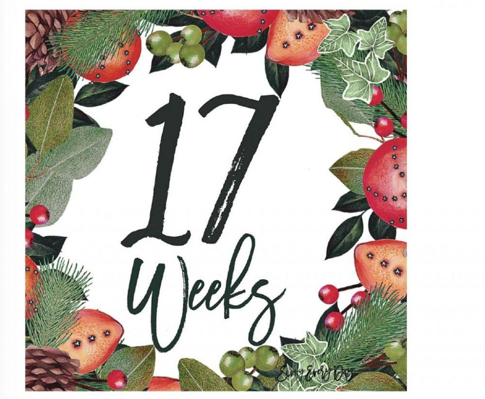 17 weeks November week-by-week example