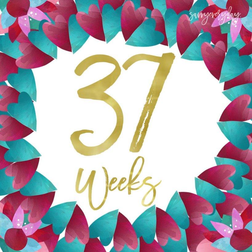 37 weeks sample photo