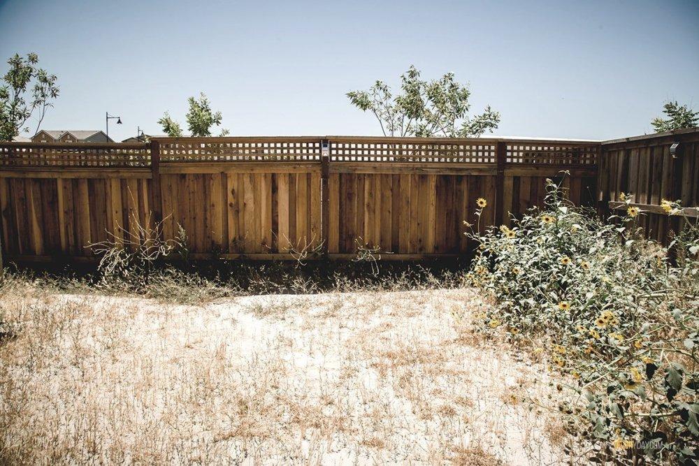 empty backyard