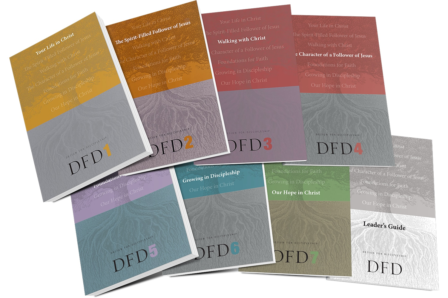 DFD: Design for Discipleship Series | The Navigators