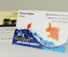 Raise the bar on your print designs with thermography printing business card with thermography printing colourmoves