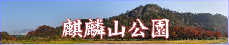 麒麟山公園 秋 紅葉:新潟見どころナビ