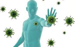Increase in Immunity