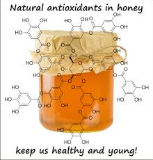 Source of antioxidant