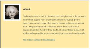 WP Biographia plugin