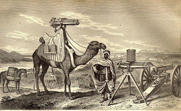 https://i0.wp.com/www.navyfrogmen.com/images/camel.JPG